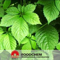 100% Natural Gynostemma Extract