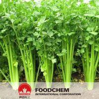 Natural Celery Extract 98% Apigenin