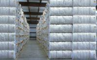 100% Raw Cotton