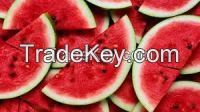 Fresh Water Melons Fruits