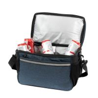 Regular Cooler Bag