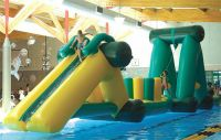 Inflatable 50 ft dragon Obstacle Course