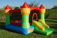 jumping bouncy castle inflatables