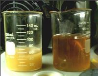 UCO/Used cooking oil