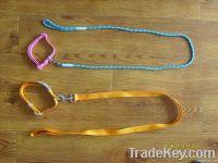 leash and leash webbing