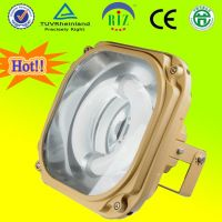 Magnetic Induction Flood Light