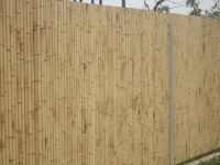 bamboo fences high quality, cheap bamboo fencing, nice bamboo fences, bamboo fencing best price, natural bamboo fences