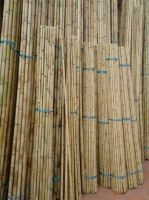 bamboo poles, bamboo poles high quality, cheap bamboo poles, nice bamboo pole, best price bamboo poles, natural bamboo poles