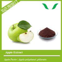 Dry apple pectin fruit  pectin powder supplement for sale