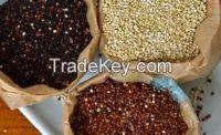 White Black and red Quinoa