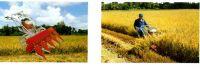 Rice Reaper (NP120)