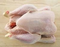 Export Whole Chicken Meat | Chicken Meat Suppliers | Poultry Meat Exporters | Chicken Pieces Traders | Processed Chicken Meat Buyers | Frozen Poultry Meat Wholesalers | Halal Chicken | Low Price Freeze Chicken Wings | Best Buy Chicken Parts | Buy Chicken