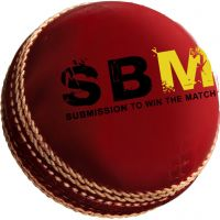 Cricket ball in leather with Branding logo