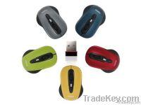 2.4G Beautiful Optical Wireless Mouse