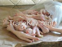 FROZEN CHICKEN AND CHICKEN FEET ,PAWS AND BEEF MEAT