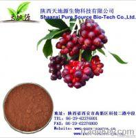 Fructus schisandrae chinensis Extract