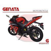 New Design EEC 250CC Sport Motorbike (GM250YZF-R)