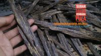 Wild Harvested Agarwood