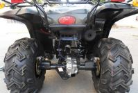 ATV/ Quad Bike/ Farm ATV with Free Shipping