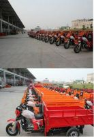 High Quality 250cc 2 wheel/3 wheels Chopper Motorcycle with EEC and EPA