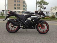 Good Price EEC Racing Motorcycle Sport Motorcycle Street Motorcycle