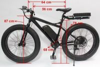 2014 New Fat Tire 48V 1000W Beach Ebike+LCD Display+48V 12Ah Battery
