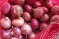 Fresh Onions(Red,white and brown)