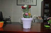 Cheap Elegant Wood Grain Flower Pots