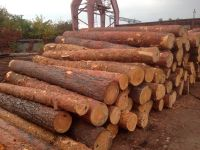 Pine/Beech Round/Spruce Round/ Ash and Oak Logs