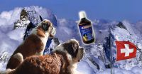 Ama-Dog 500ml 100% All Natural Nutritional Dog Supplement for Joints and Dysplasia