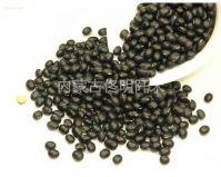 black round bean