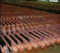 Copper Cathode Plates (Electrolytic Grade A)