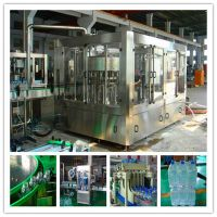 Automatic Drinking Water PET Bottle Filling Machine