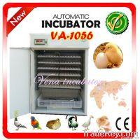 1000 Eggs Fully Automatic Egg Incubator on Hot Sale