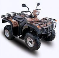 Racing ATV /Quad Bike/Quads (250cc)