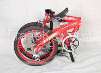 Aluminum Folding Bike