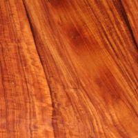 Granadillo hardwood logs