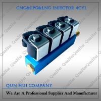 Super Quality 12V/3Ohms CNG/LPG 4 Cylinder Injector Rail