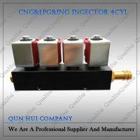 CNG/LPG Conversion Kits Injector Rail