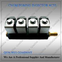 CNG Cars Conversion Kits Injector Rail