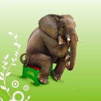 China plastic elephant stool H17cm