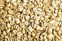 Export Arabica Coffee Beans,Arabica Coffee Bean Importer,Arabica Coffee Beans Buyer,Buy Arabica Coffee Beans,Arabica Coffee Bean Wholesaler,Arabica Coffee Bean Manufacturer,Best Arabica Coffee Bean Exporter,Low Price Arabica Coffee Beans,Best Quality Arab