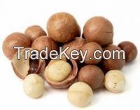 Quality Macademia Nuts