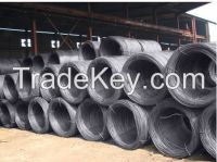 Steel Wire Rod SAE1008B