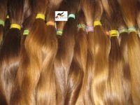 SLAVIC & BRAZILIAN HAIR