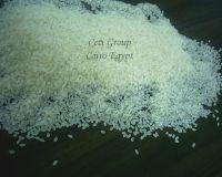 white egyptian rice