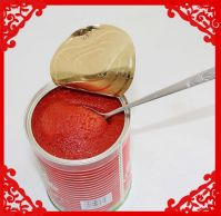 Cheap 20-24% 26-28% 28-30% Canned/Pouch Tomato Paste Ketchup Supplier