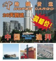 Sea Freight/shipping Service From Guangzhou To Dubai. International Logistics enterprise