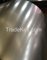 Hot Dipped Galvanised Steel Sheet in Coils
