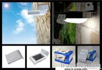Solar LED Wall Light with Ray sensor